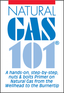 Nat Gas 101 Logo